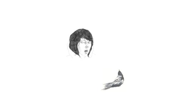Goodyear_Girl with birds inside her_2011_H4853_Still 1_300dpi